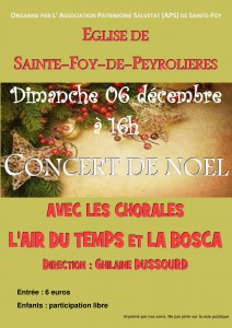 2015_12_06 Ste Foy de Peyrolières